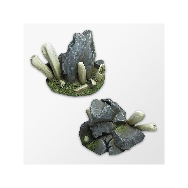 Bones and Rocks
